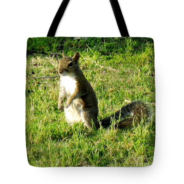 Tote Bag featuring the photograph Squirrel by Oksana Semenchenko