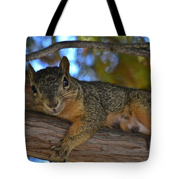 Squirrel On Watch Tote Bag