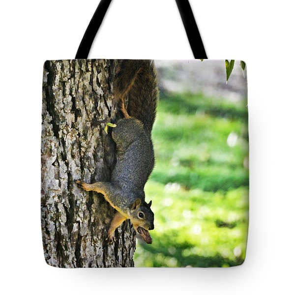 Squirrel With Pecan Tote Bag