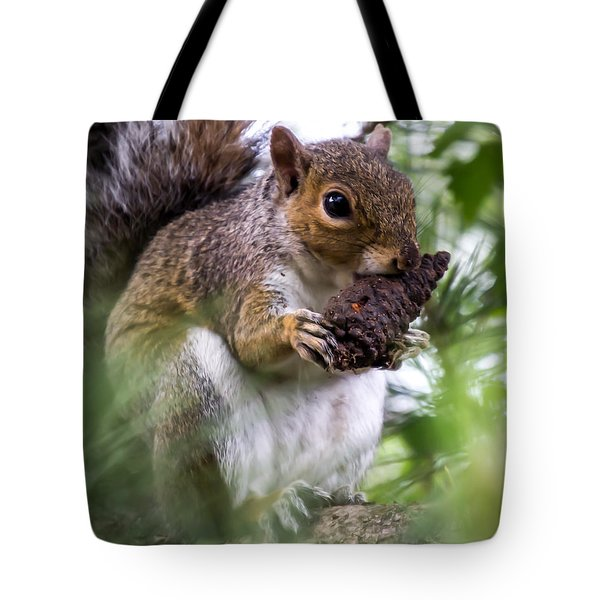 Squirrel With Pine Cone Tote Bag