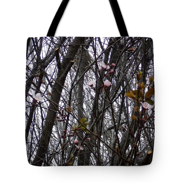 Tote Bag featuring the photograph Spring Blossoms by Carla Carson