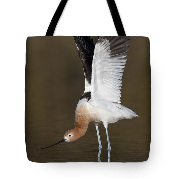 Tote Bag featuring the photograph Sstretchhh by Bryan Keil