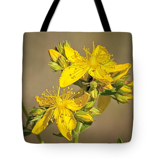 Tote Bag featuring the photograph St Johns Wort by Betty Depee