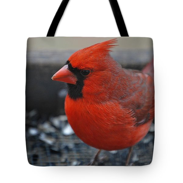 St. Louis Tote Bag by Skip Willits