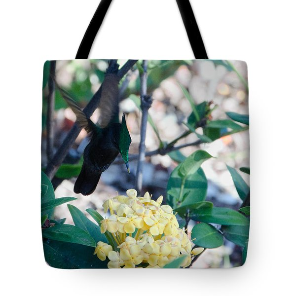 St. Lucian Hummingbird Tote Bag