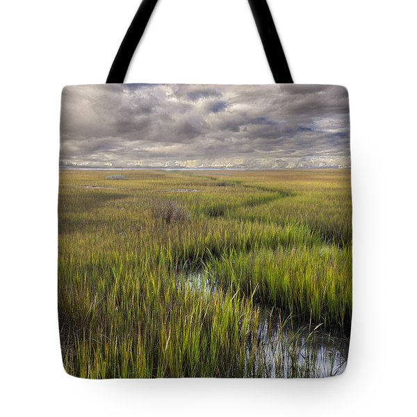 St Mary's Island Georgia Tote Bag by Gary Warnimont