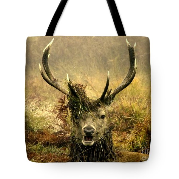 Stag Party The Series. One More For The Road Tote Bag