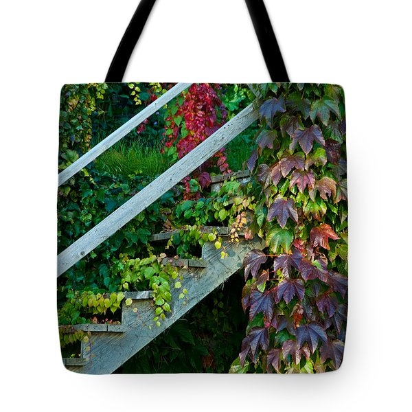 Stairs2 Tote Bag by Michele Wright