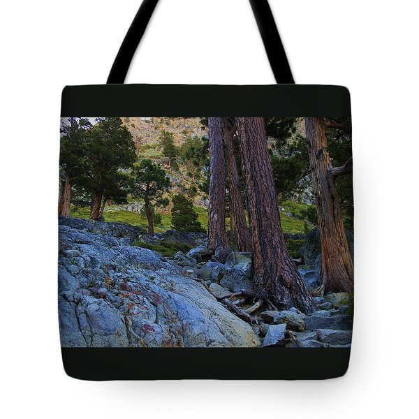 Tote Bag featuring the photograph Stairway To Heaven by Sean Sarsfield