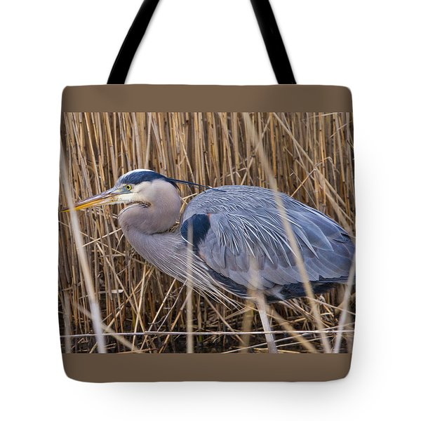 Stalking Fish In The Reeds Tote Bag by Allan Levin