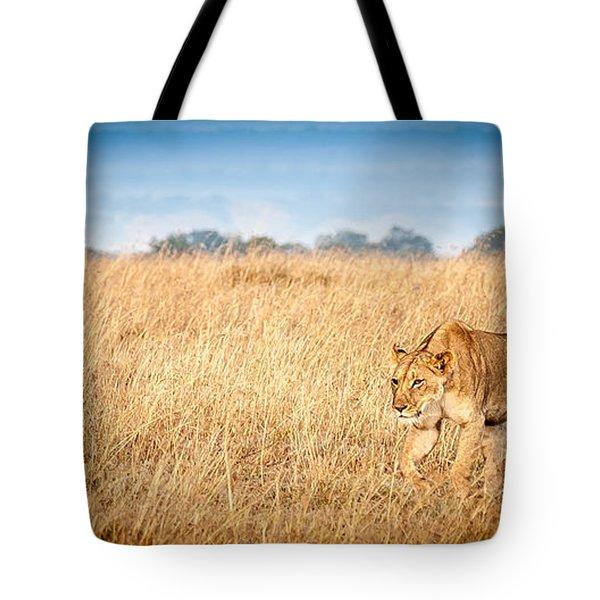 Stalking Lion Tote Bag