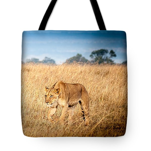 Stalking Lion Tote Bag