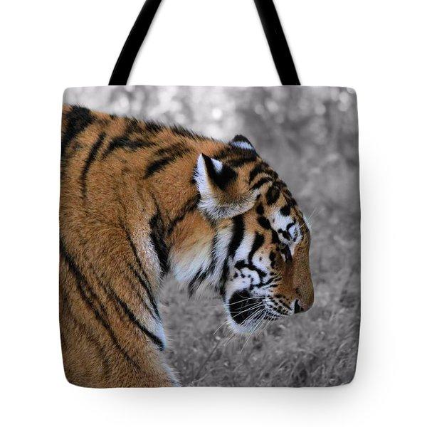 Stalking Tiger Tote Bag by Dan Sproul