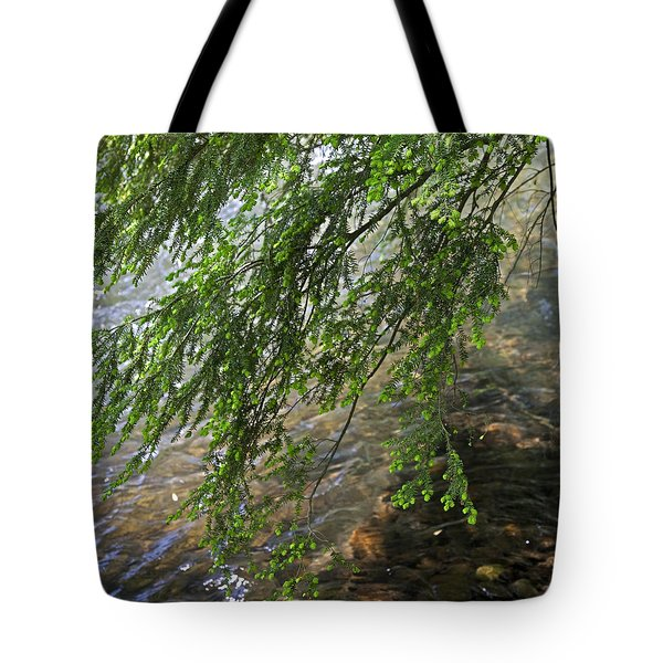 Stalking Trout Tote Bag by John Stephens