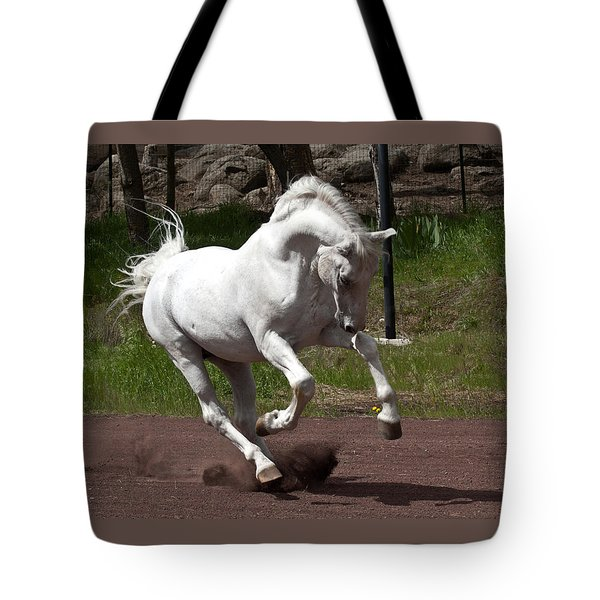 Stallion Tote Bag by Wes and Dotty Weber