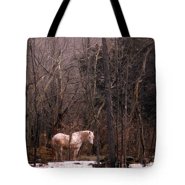 Stallion In The Mountain Pasture Tote Bag by Patricia Keller