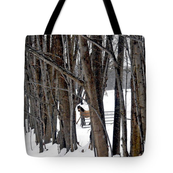 Stallion In The Woods Tote Bag by Patricia Keller