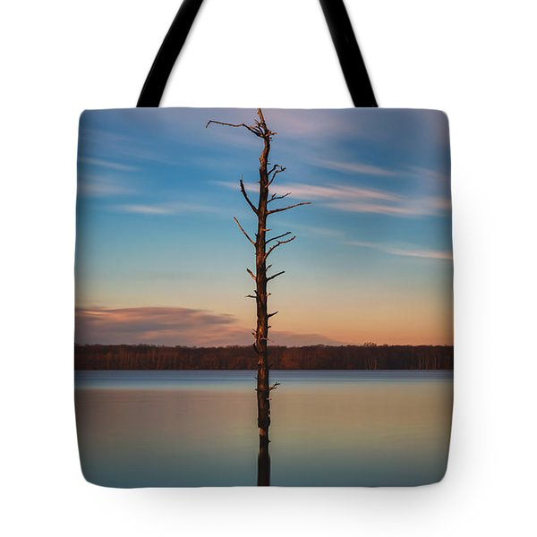 Stand Alone 16x9 Crop Tote Bag