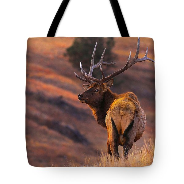 Tote Bag featuring the photograph Stand Alone by Kadek Susanto