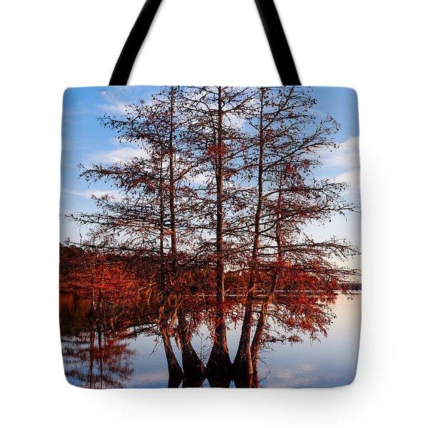 Stand Of Bald Cypress Trees At Ba Steinhagen Lake In Martin Dies Jr State Park - Jasper East Texas Tote Bag