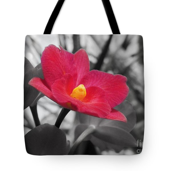 Stand Out Beauty Tote Bag