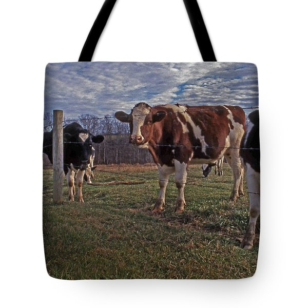 Stand Yer Ground Tote Bag by Skip Willits