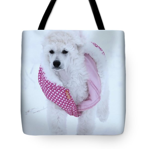 Standard Poodle In Winter Tote Bag