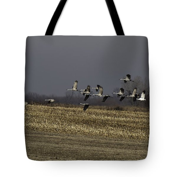 Standing Out 1 Tote Bag