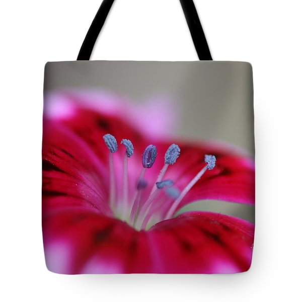 Standing Tall Sweet William Tote Bag
