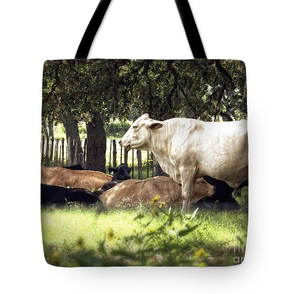 Standing Watch Cattle Photographic Art Print Tote Bag by Ella Kaye Dickey
