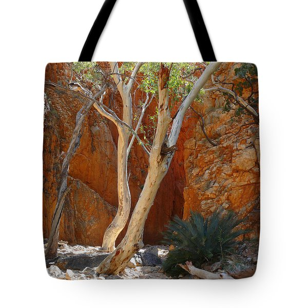 Standley Chasm Tote Bag by Evelyn Tambour