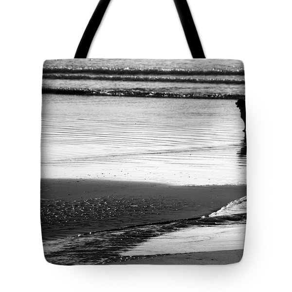 Standoff At The Beach Tote Bag by Aidan Moran