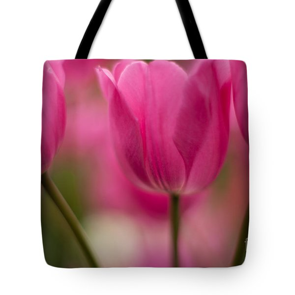 Standouts Tote Bag by Mike Reid