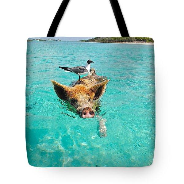 Staniel Cay Swimming Pig Seagull Fish Exumas Tote Bag