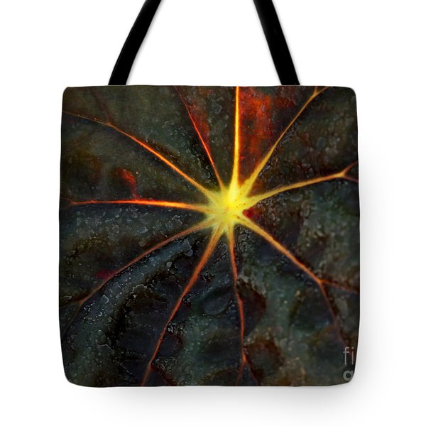Star Bright Tote Bag by Sabrina L Ryan