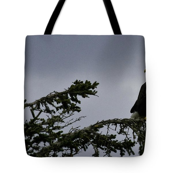Tote Bag featuring the photograph Stare Down by Betty Depee