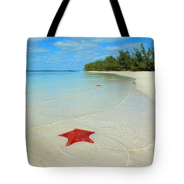 Starfish 5 Of Bottom Harbour Sound Tote Bag