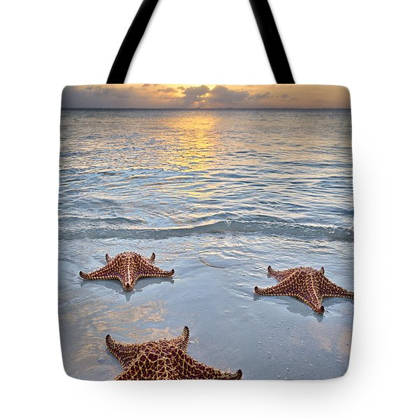Starfish Beach Sunset Tote Bag