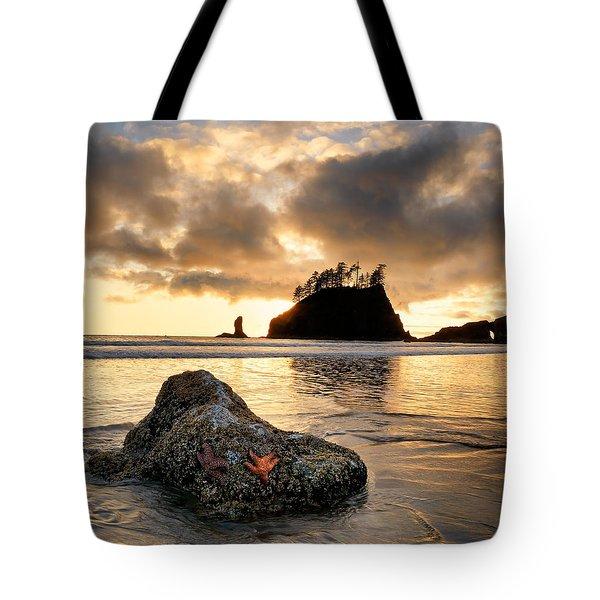 Starfish Tote Bag by Leland D Howard