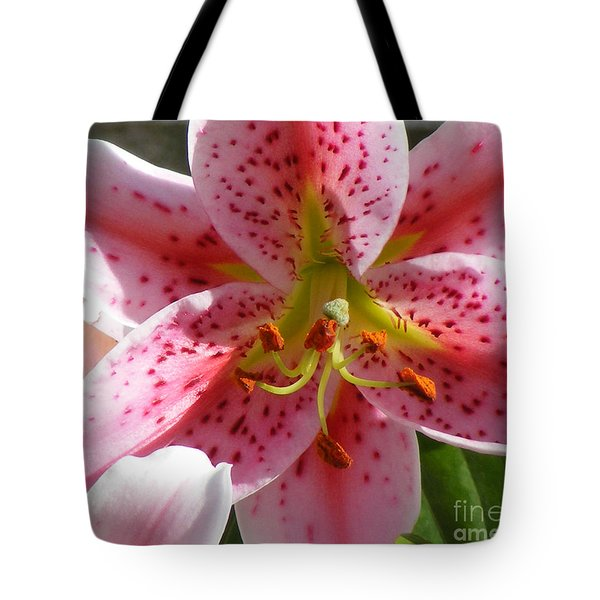 Stargazer Lily Tote Bag by Barbara Griffin
