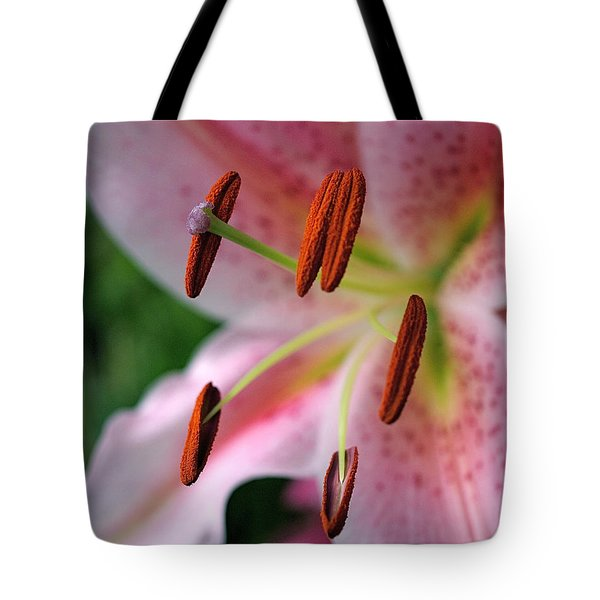 Stargazer Tote Bag by Rona Black
