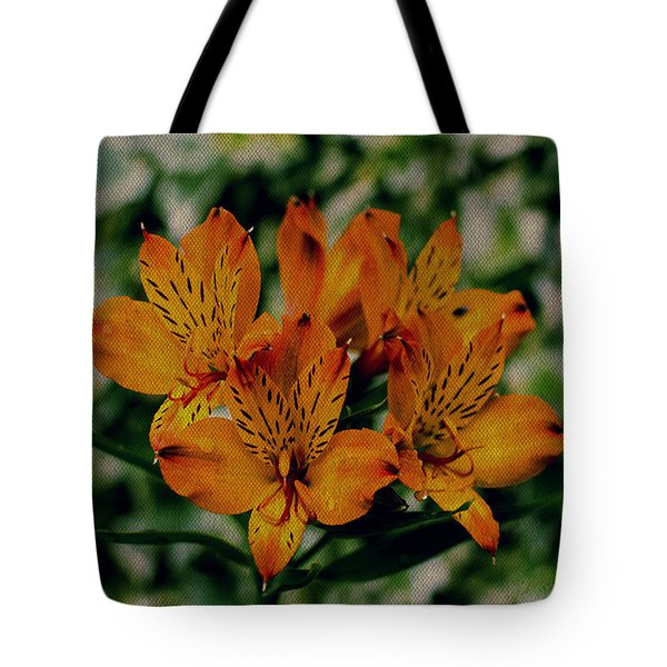 Stargazers Tote Bag by Marco Oliveira