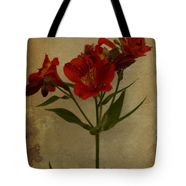 Stargazers On Paper Tote Bag by Marco Oliveira