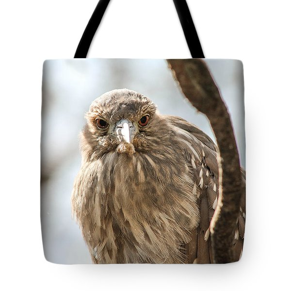 Staring Contest Tote Bag