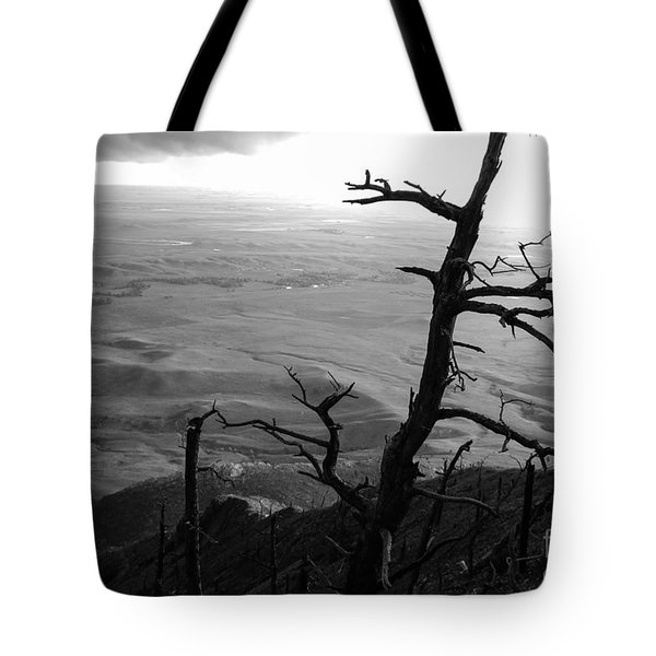 Tote Bag featuring the photograph Stark Tree by Mary Carol Story