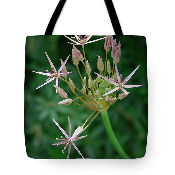 Starlight Tote Bag by Aimee L Maher Photography and Art Visit ALMGallerydotcom