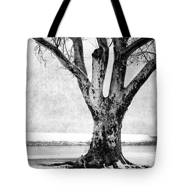 Stately Tote Bag by Betty LaRue