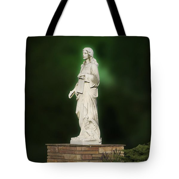 Statue 07 Tote Bag by Thomas Woolworth