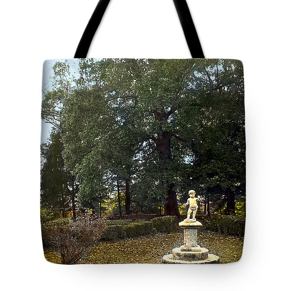 Statue And Tree Tote Bag by Terry Reynoldson
