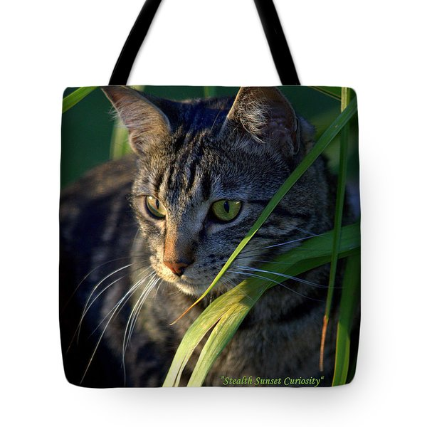 Stealth Sunset Curiosity Tote Bag